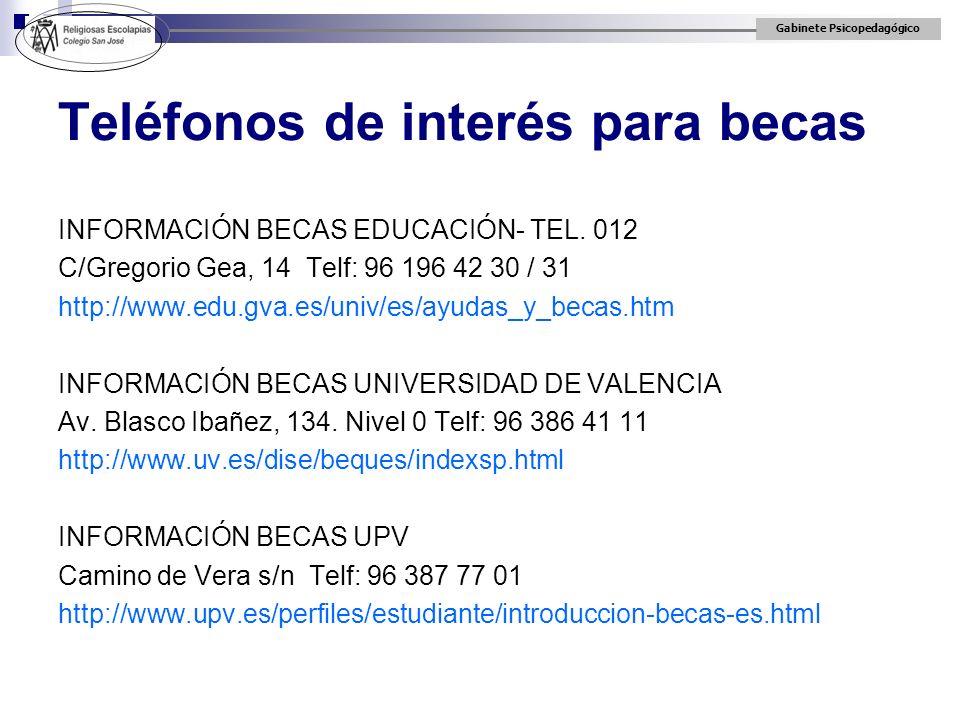 Gabinete Psicopedagógico INFORMACIÓN BECAS EDUCACIÓN- TEL. 012 C/Gregorio Gea, 14 Telf: 96 196 42 30 / 31 http://www.edu.gva.es/univ/es/ayudas_y_becas
