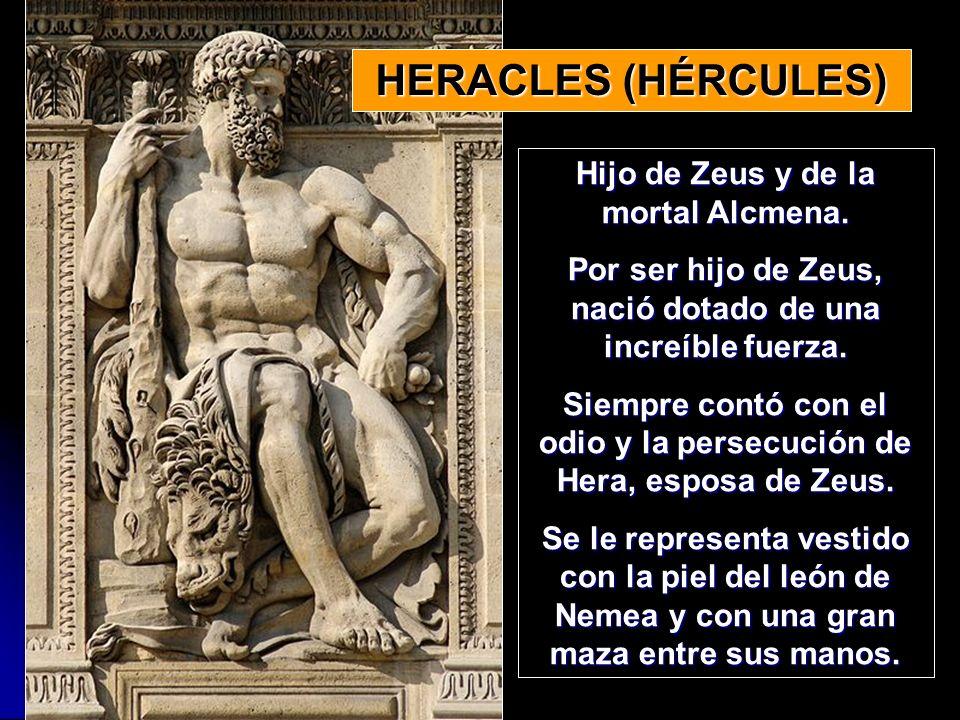 Hijo de Zeus y de la mortal Alcmena. Por ser hijo de Zeus, nació dotado de una increíble fuerza. Siempre contó con el odio y la persecución de Hera, e