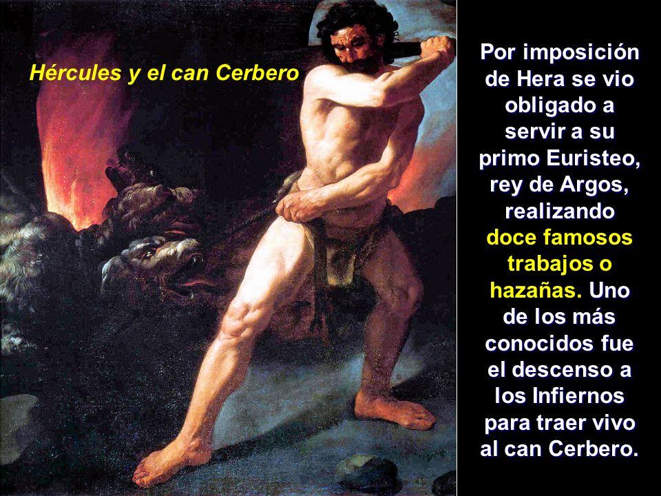 Hércules y el can Cerbero Por imposición de Hera se vio obligado a servir a su primo Euristeo, rey de Argos, realizando Uno de los más conocidos fue e