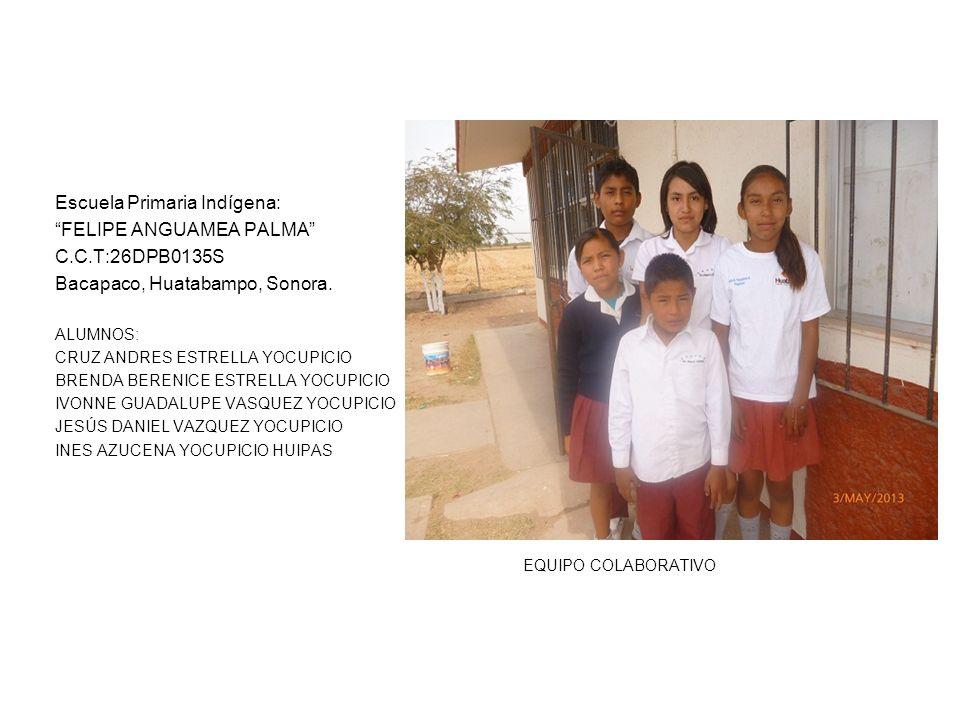 Escuela Primaria Indígena: FELIPE ANGUAMEA PALMA C.C.T:26DPB0135S Bacapaco, Huatabampo, Sonora. ALUMNOS: CRUZ ANDRES ESTRELLA YOCUPICIO BRENDA BERENIC