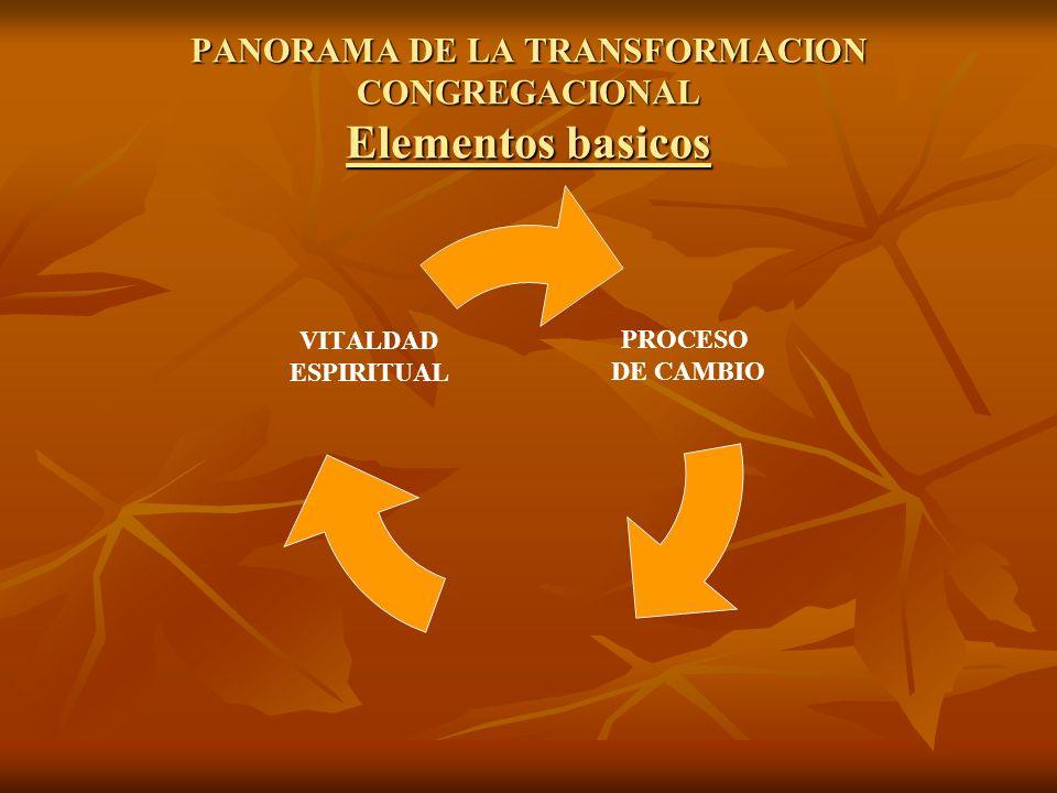 PANORAMA DE LA TRANSFORMACION CONGREGACIONAL Elementos basicos PROCESO DE CAMBIO VITALDAD ESPIRITUAL