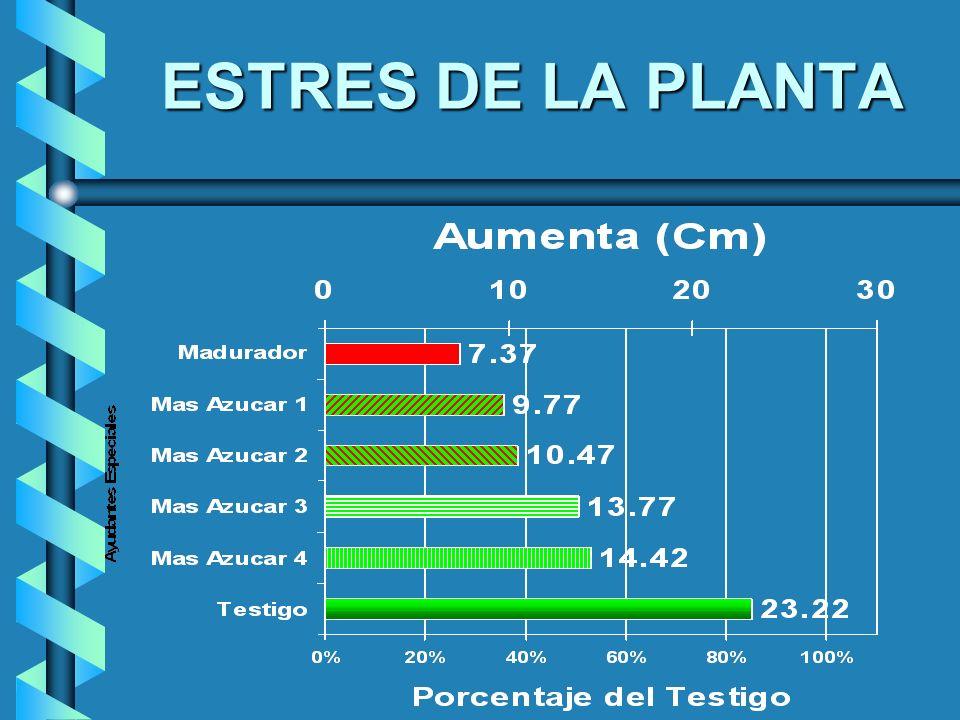 ESTRES DE LA PLANTA