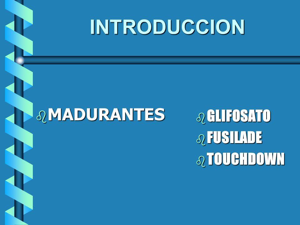 INTRODUCCION MADURANTES MADURANTES b GLIFOSATO b FUSILADE b TOUCHDOWN