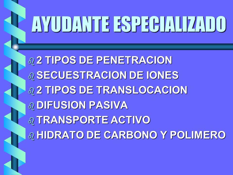 AYUDANTE ESPECIALIZADO b 2 TIPOS DE PENETRACION b SECUESTRACION DE IONES b 2 TIPOS DE TRANSLOCACION b DIFUSION PASIVA b TRANSPORTE ACTIVO b HIDRATO DE CARBONO Y POLIMERO