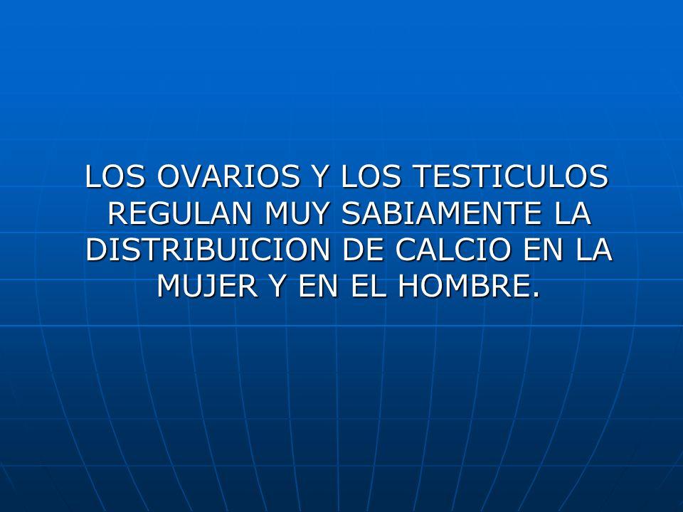 LOS OVARIOS Y LOS TESTICULOS REGULAN MUY SABIAMENTE LA DISTRIBUICION DE CALCIO EN LA MUJER Y EN EL HOMBRE. LOS OVARIOS Y LOS TESTICULOS REGULAN MUY SA