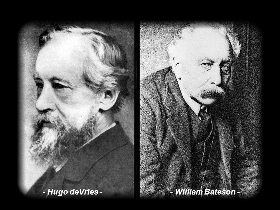 A lo que Mayr se refiere es a la creación de la Genética de poblaciones, supuesta base empírica del darwinismo actual, y las objeciones que menciona e
