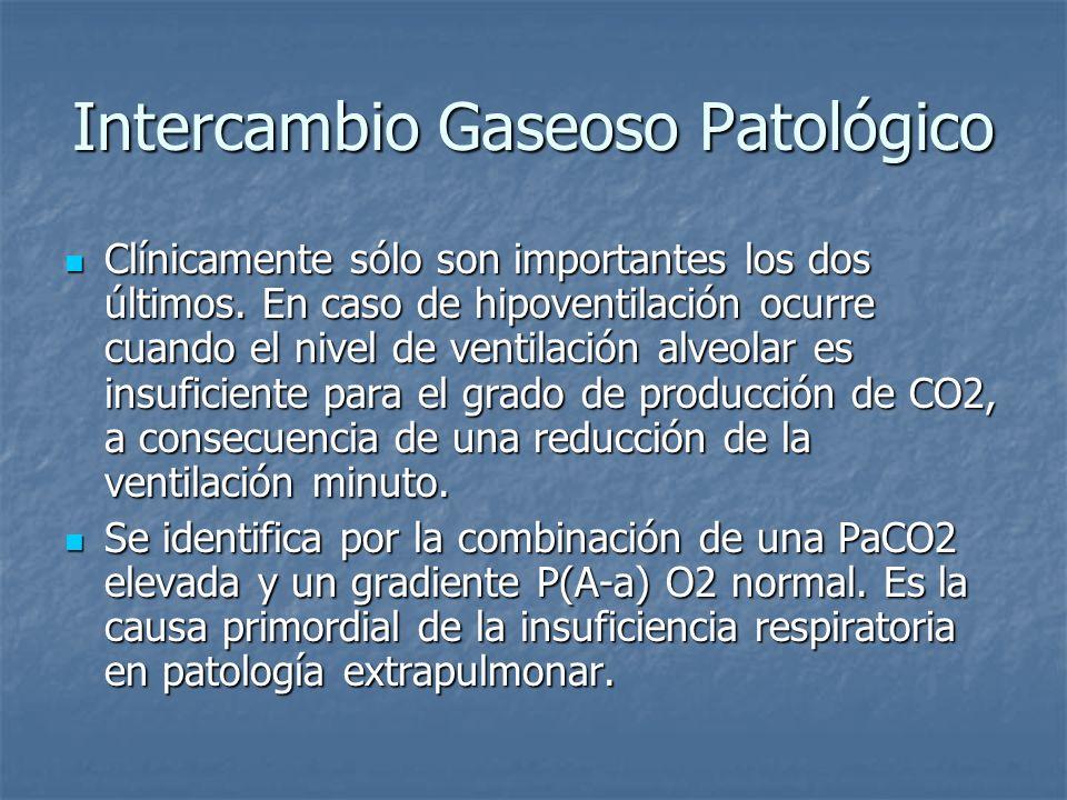 Intercambio Gaseoso Patológico Clínicamente sólo son importantes los dos últimos. En caso de hipoventilación ocurre cuando el nivel de ventilación alv