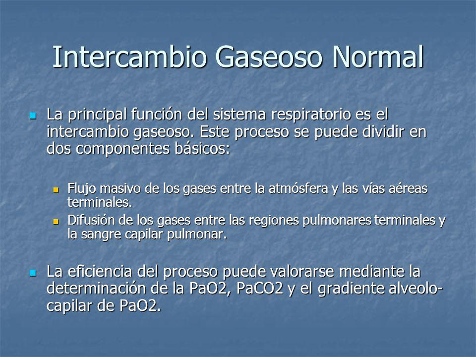 Intercambio Gaseoso Normal La principal función del sistema respiratorio es el intercambio gaseoso. Este proceso se puede dividir en dos componentes b