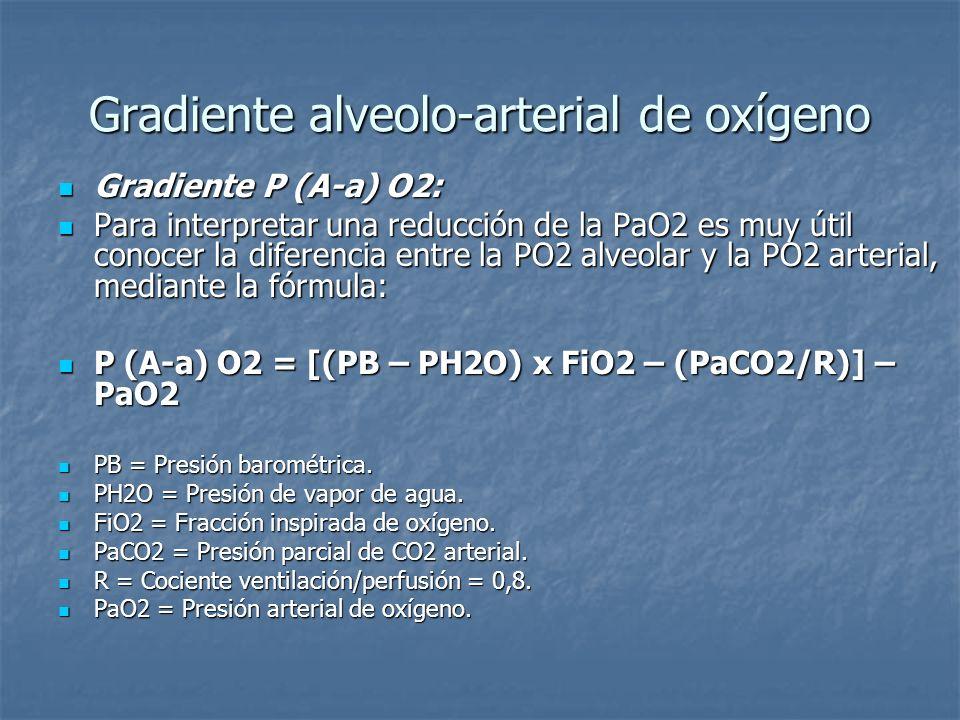 Gradiente alveolo-arterial de oxígeno El gradiente P(A-a)O2 se afecta por la edad y la posición: El gradiente P(A-a)O2 se afecta por la edad y la posición: De pie: P(A-a)O2 = 2,5 + 0,21 x edad (años).