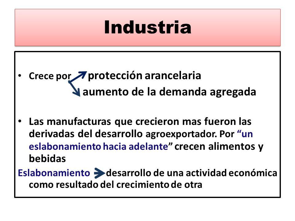 Industria Crece por protección arancelaria aumento de la demanda agregada Las manufacturas que crecieron mas fueron las derivadas del desarrollo agroe