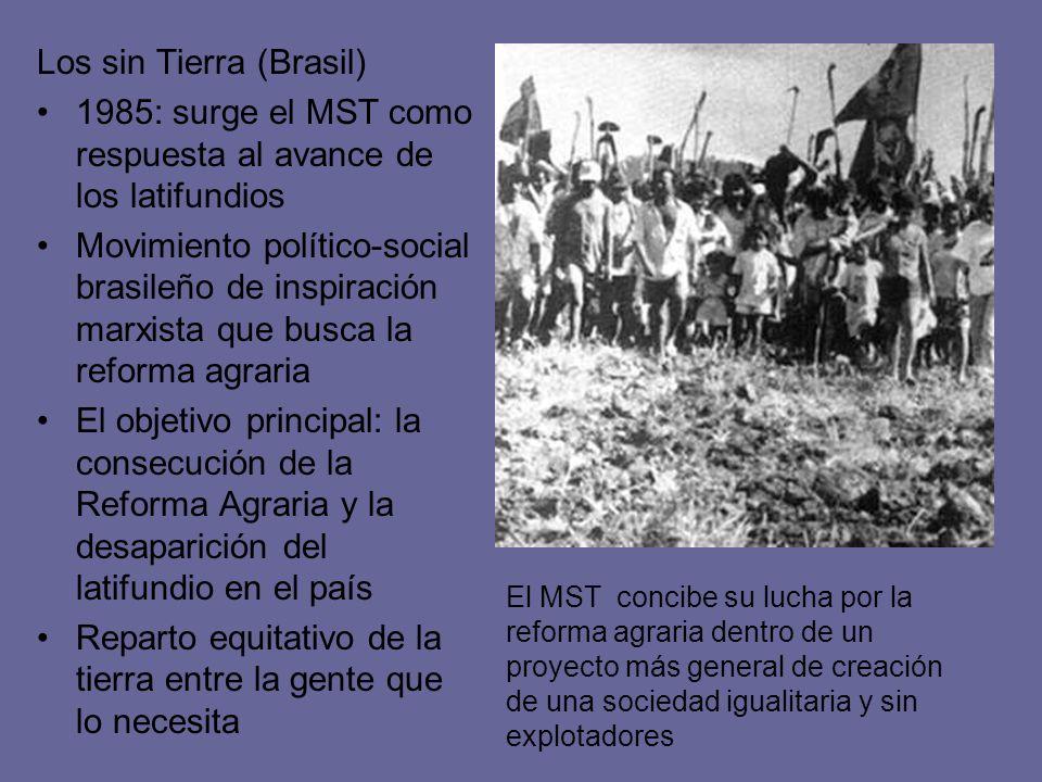 Los sin Tierra (Brasil) 1985: surge el MST como respuesta al avance de los latifundios Movimiento político-social brasileño de inspiración marxista qu