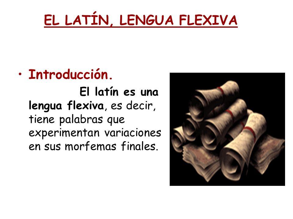 EL LATÍN, LENGUA FLEXIVA Introducción. El latín es una lengua flexiva, es decir, tiene palabras que experimentan variaciones en sus morfemas finales.