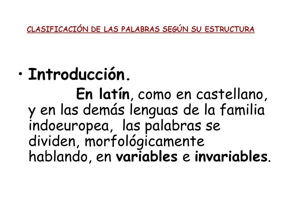 CLASIFICACIÓN DE LAS PALABRAS SEGÚN SU ESTRUCTURA Introducción. En latín, como en castellano, y en las demás lenguas de la familia indoeuropea, las pa
