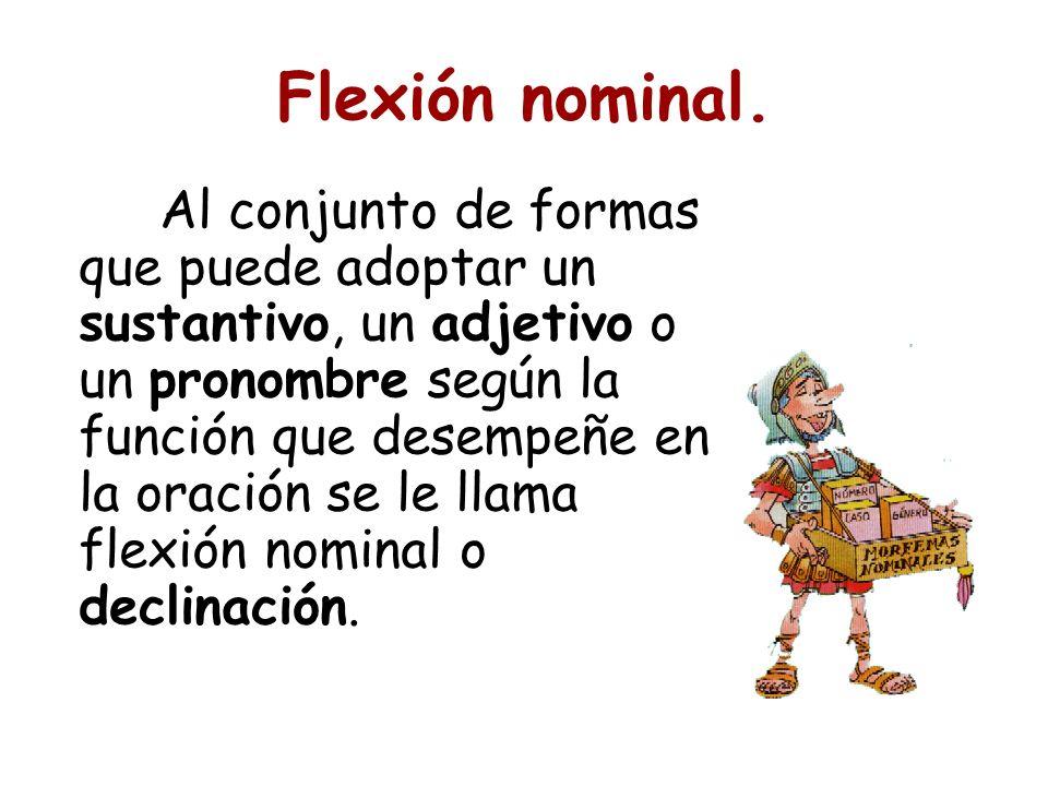 Flexión nominal. Al conjunto de formas que puede adoptar un sustantivo, un adjetivo o un pronombre según la función que desempeñe en la oración se le