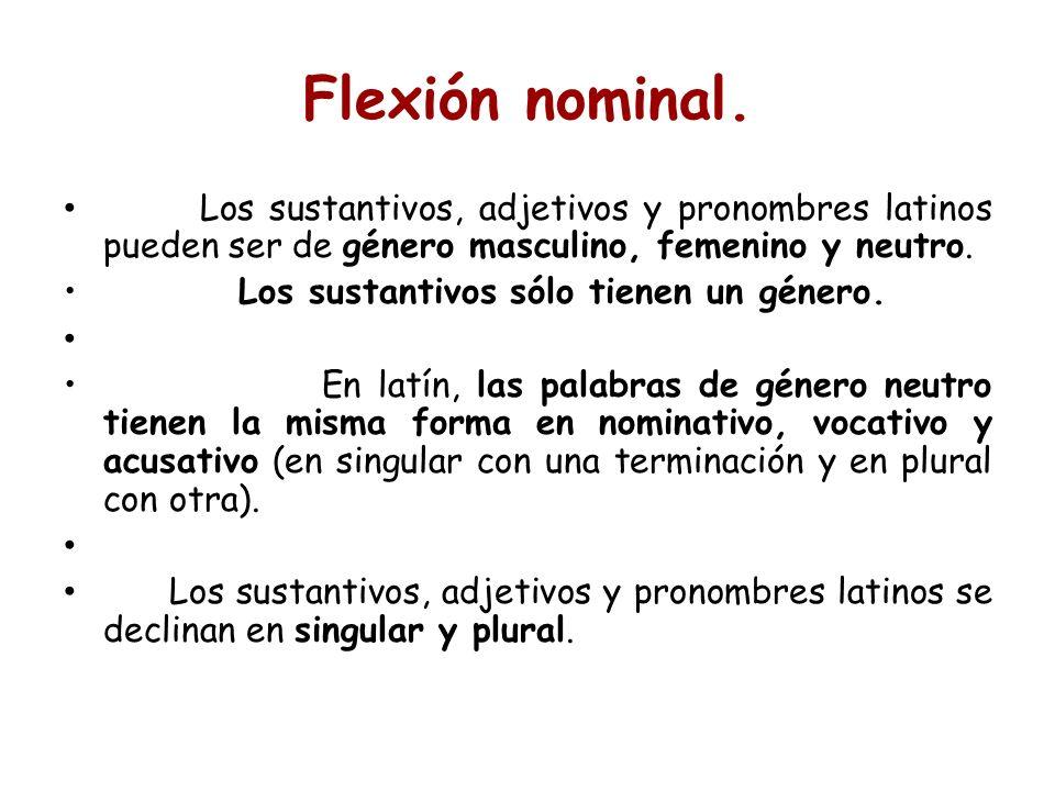 Los sustantivos, adjetivos y pronombres latinos pueden ser de género masculino, femenino y neutro. Los sustantivos sólo tienen un género. En latín, la