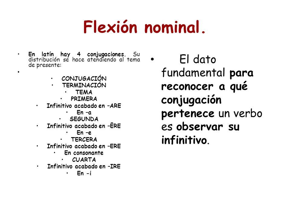 Flexión nominal. En latín hay 4 conjugaciones. Su distribución se hace atendiendo al tema de presente: CONJUGACIÓN TERMINACIÓN TEMA PRIMERA Infinitivo