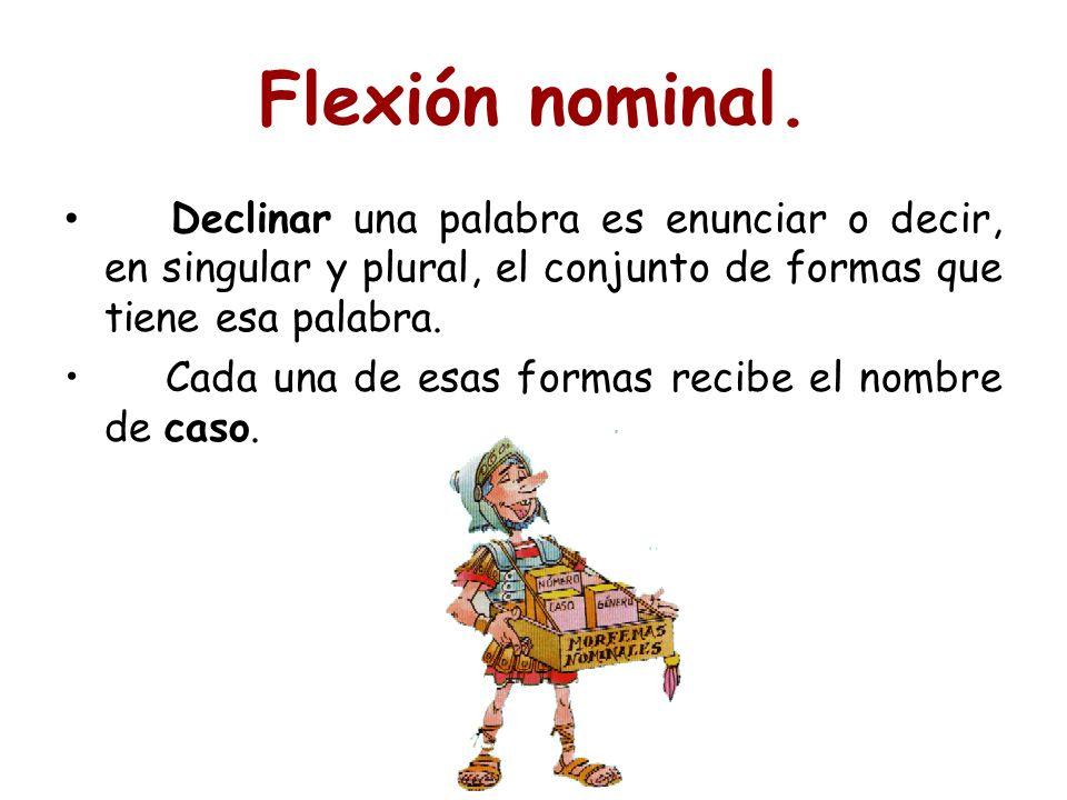 Flexión nominal. Declinar una palabra es enunciar o decir, en singular y plural, el conjunto de formas que tiene esa palabra. Cada una de esas formas