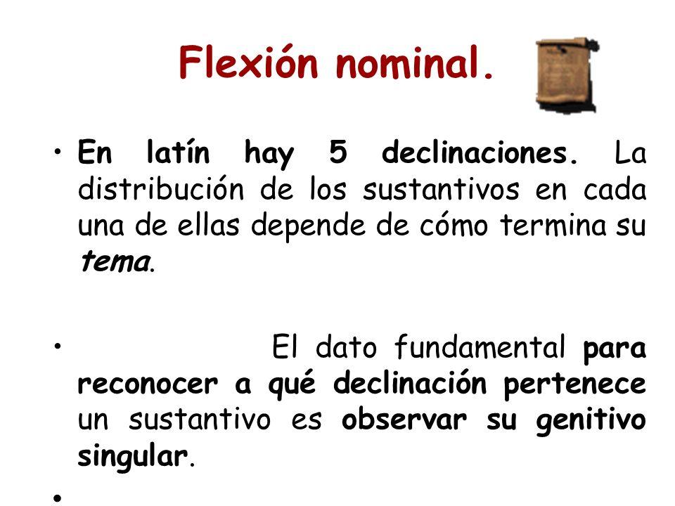 En latín hay 5 declinaciones. La distribución de los sustantivos en cada una de ellas depende de cómo termina su tema. El dato fundamental para recono