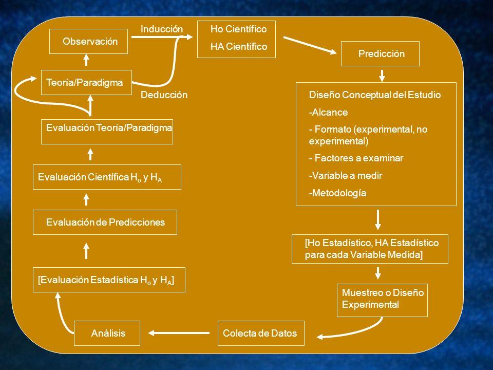 Predicción ObservaciónTeoría/Paradigma Evaluación Teoría/Paradigma Evaluación Científica H o y H A Evaluación de Predicciones[Evaluación Estadística H