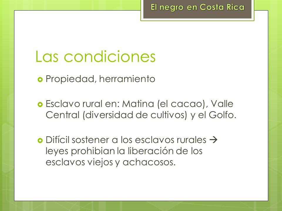 Las condiciones Propiedad, herramiento Esclavo rural en: Matina (el cacao), Valle Central (diversidad de cultivos) y el Golfo. Difícil sostener a los