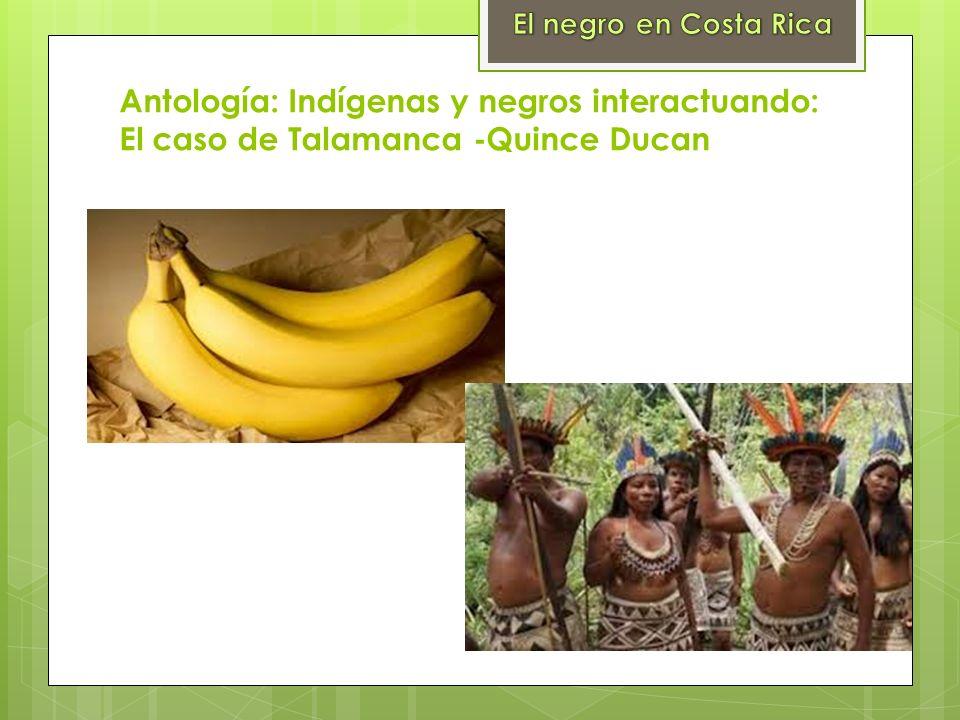 Antología: Indígenas y negros interactuando: El caso de Talamanca -Quince Ducan
