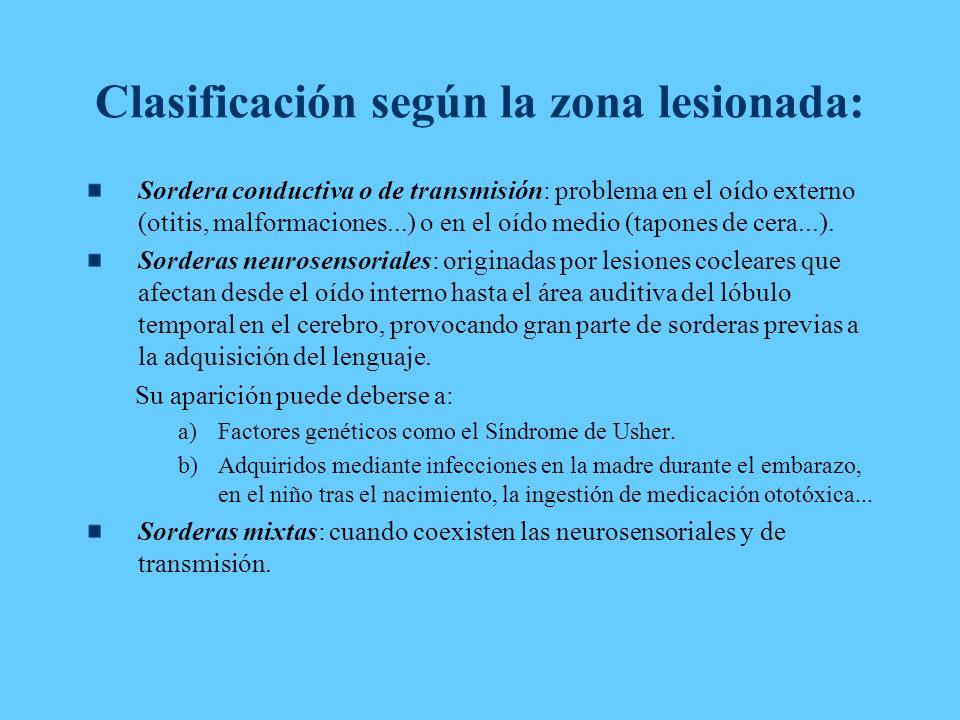 Clasificación según la zona lesionada: Sordera conductiva o de transmisión: problema en el oído externo (otitis, malformaciones...) o en el oído medio