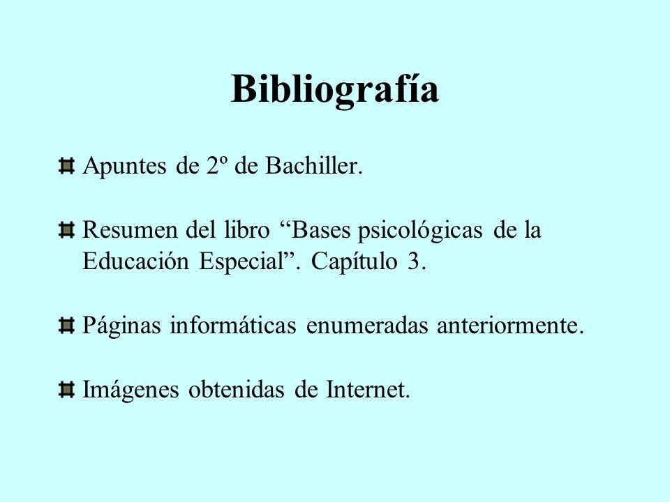 Bibliografía Apuntes de 2º de Bachiller. Resumen del libro Bases psicológicas de la Educación Especial. Capítulo 3. Páginas informáticas enumeradas an