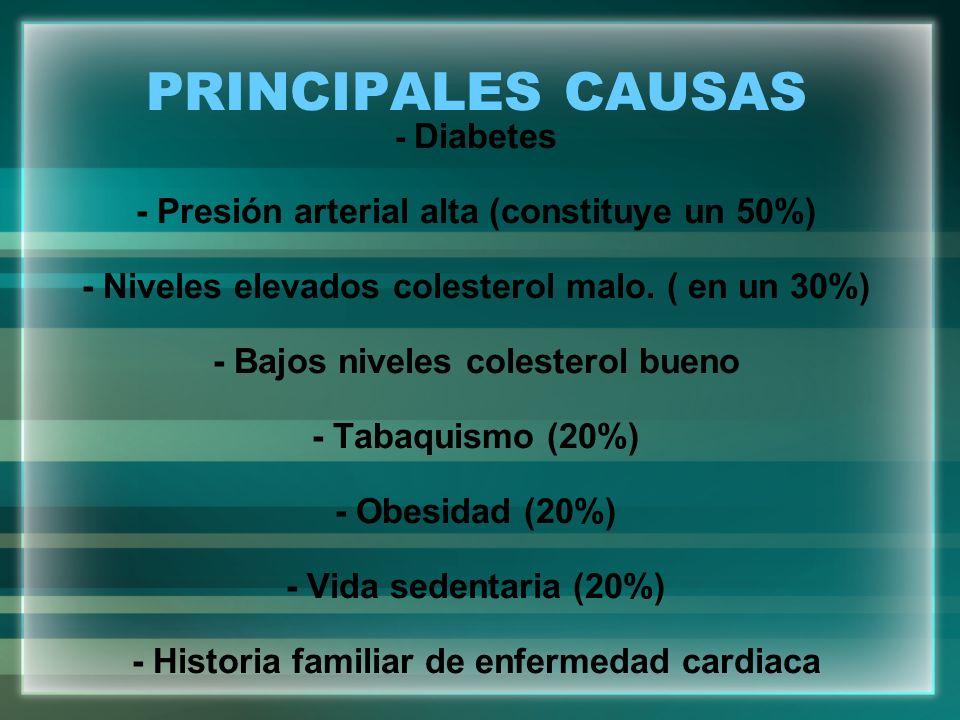 PRINCIPALES CAUSAS - Diabetes - Presión arterial alta (constituye un 50%) - Niveles elevados colesterol malo. ( en un 30%) - Bajos niveles colesterol