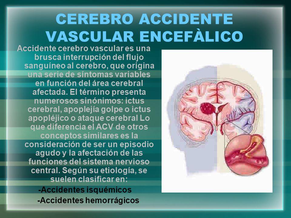 CEREBRO ACCIDENTE VASCULAR ENCEFÀLICO Accidente cerebro vascular es una brusca interrupción del flujo sanguíneo al cerebro, que origina una serie de s