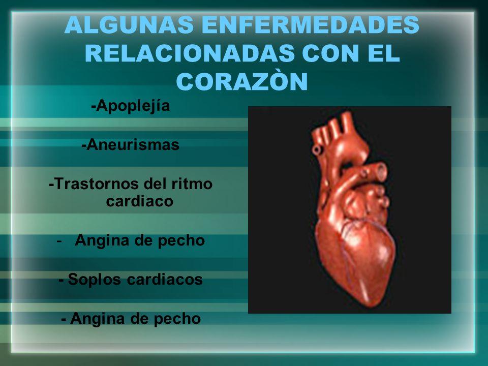 ALGUNAS ENFERMEDADES RELACIONADAS CON EL CORAZÒN -Apoplejía -Aneurismas -Trastornos del ritmo cardiaco -Angina de pecho - Soplos cardiacos - Angina de