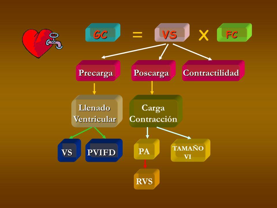 GC PrecargaPoscargaContractilidad FC LlenadoVentricular Carga Contracción VSPVIFD PA RVS TAMAÑO VI VS = X
