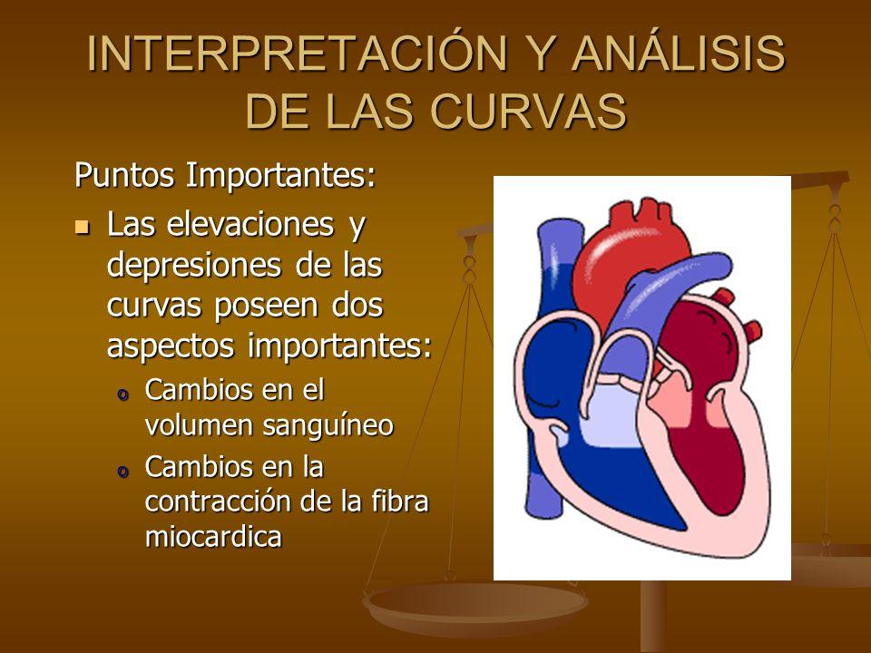 INTERPRETACIÓN Y ANÁLISIS DE LAS CURVAS Puntos Importantes: Las elevaciones y depresiones de las curvas poseen dos aspectos importantes: Las elevacion