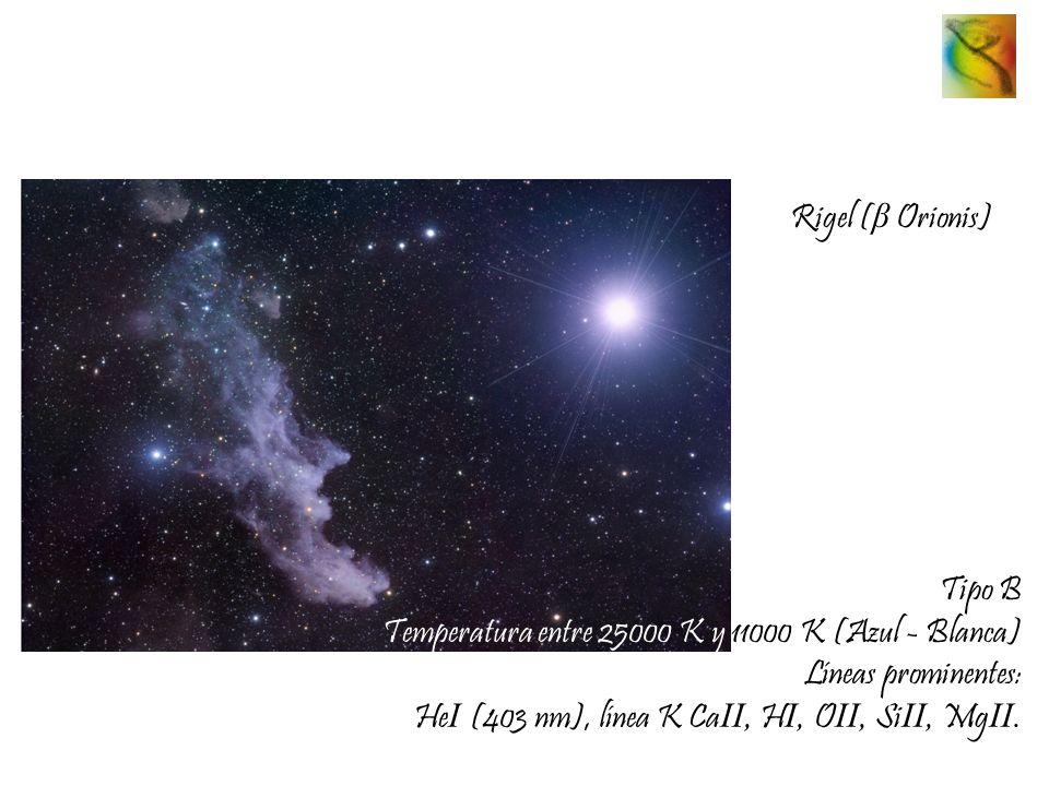 Rigel ( β Orionis) Tipo B Temperatura entre 25000 K y 11000 K (Azul - Blanca) Líneas prominentes: He I (403 nm), línea K Ca II, H I, O II, Si II, Mg I
