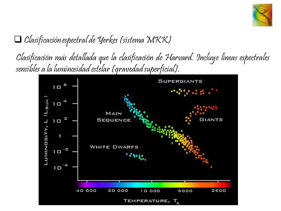 Clasificación espectral de Yerkes (sistema MKK) Clasificación más detallada que la clasificación de Harvard. Incluye líneas espectrales sensibles a la