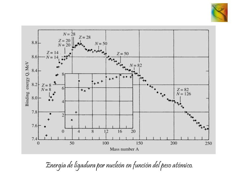 Energía de ligadura por nucleón en función del peso atómico.