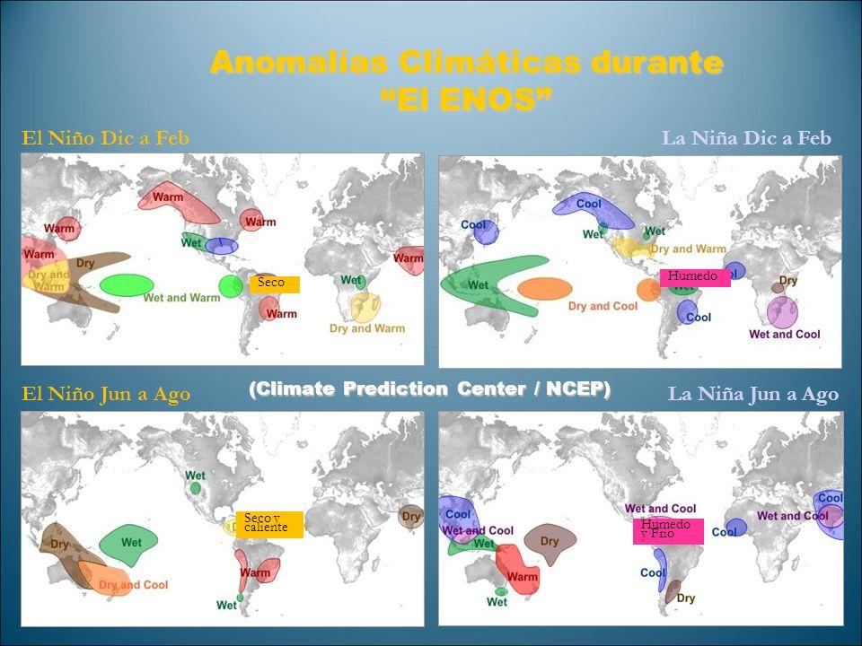 Anomalías Climáticas durante El ENOS El Niño Dic a Feb El Niño Jun a Ago La Niña Dic a Feb La Niña Jun a Ago Seco Seco y caliente Humedo y Frio (Clima