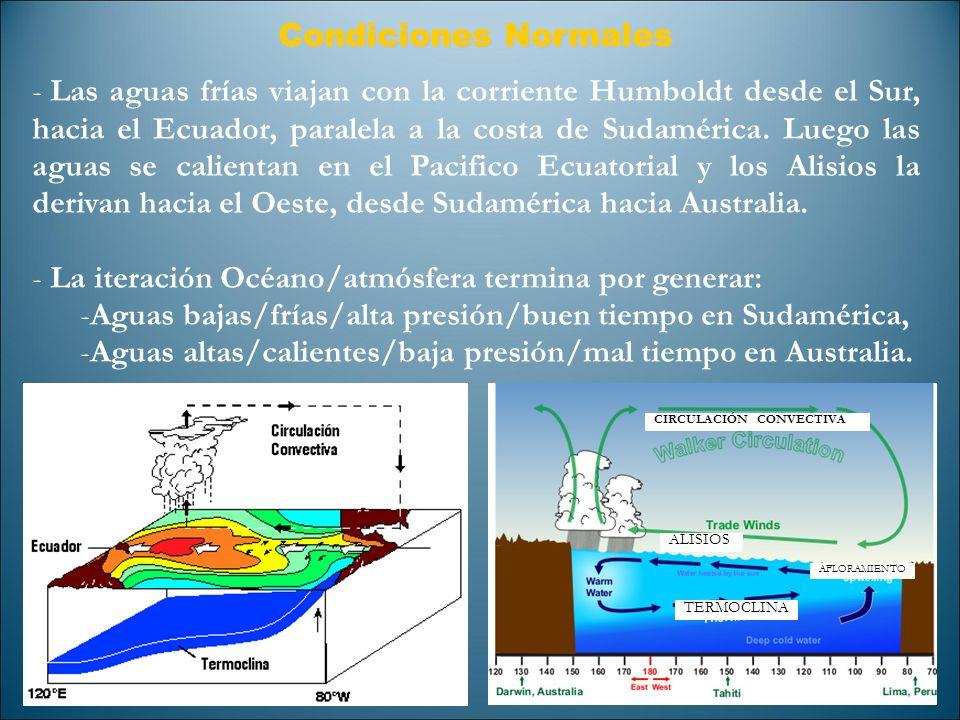 Condiciones Normales - Las aguas frías viajan con la corriente Humboldt desde el Sur, hacia el Ecuador, paralela a la costa de Sudamérica. Luego las a