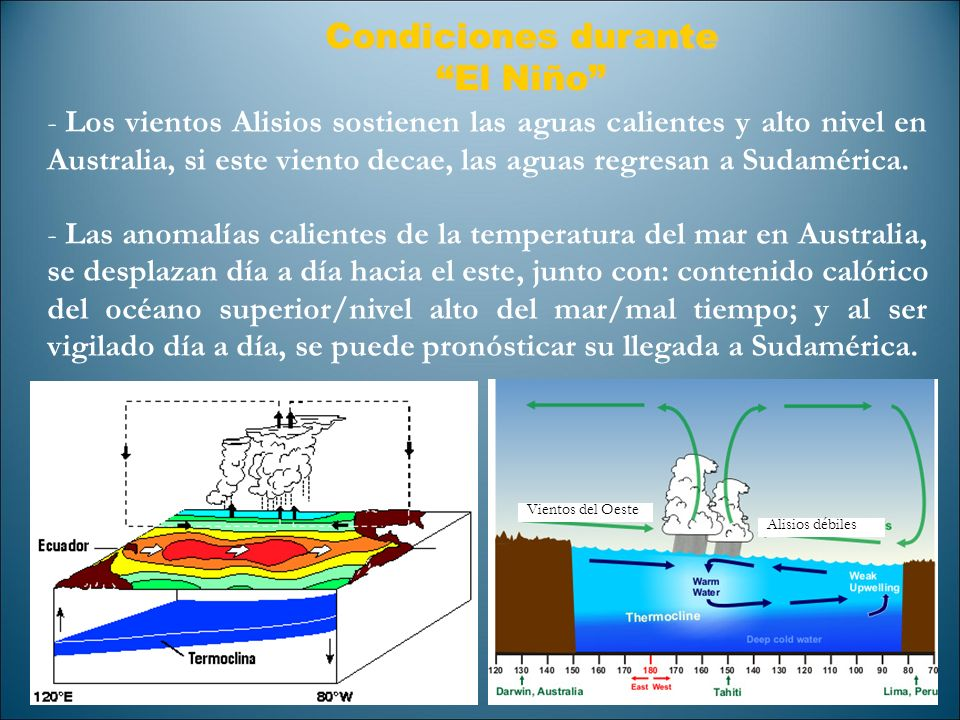 Condiciones durante El Niño - Los vientos Alisios sostienen las aguas calientes y alto nivel en Australia, si este viento decae, las aguas regresan a
