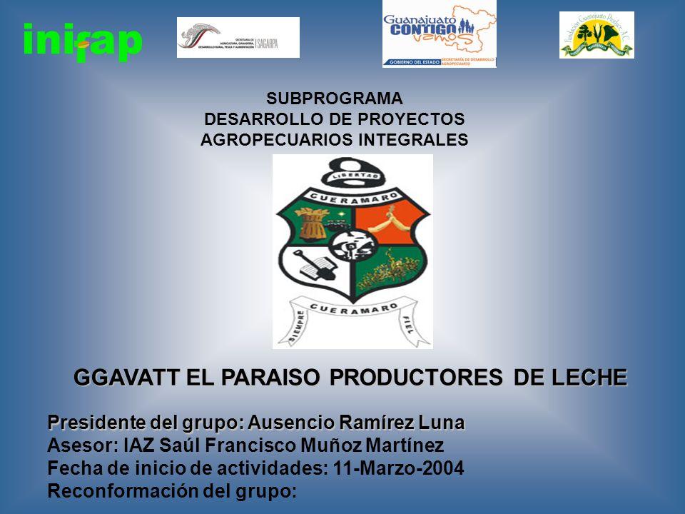 SUBPROGRAMA DESARROLLO DE PROYECTOS AGROPECUARIOS INTEGRALES GGAVATT EL PARAISO PRODUCTORES DE LECHE Presidente del grupo: Ausencio Ramírez Luna Aseso