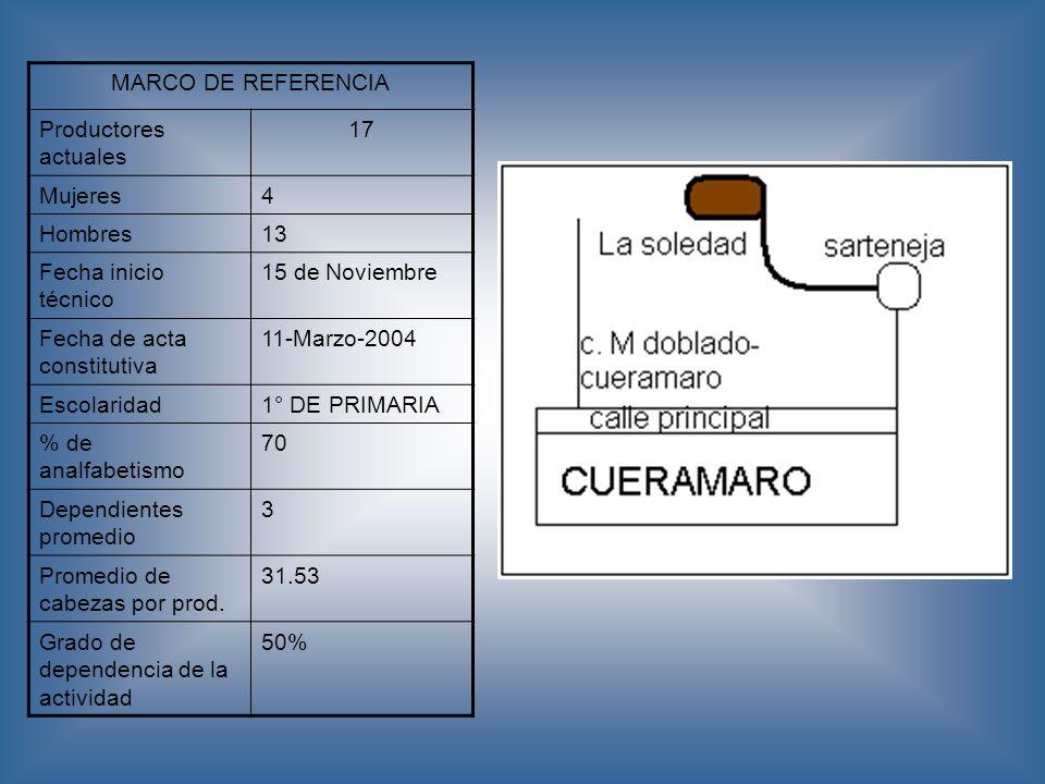 MARCO DE REFERENCIA Productores actuales 17 Mujeres4 Hombres13 Fecha inicio técnico 15 de Noviembre Fecha de acta constitutiva 11-Marzo-2004 Escolarid