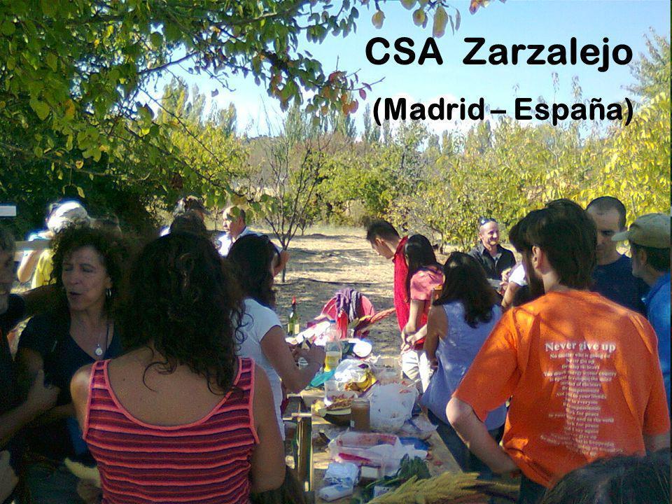 CSA Zarzalejo (Madrid – España)