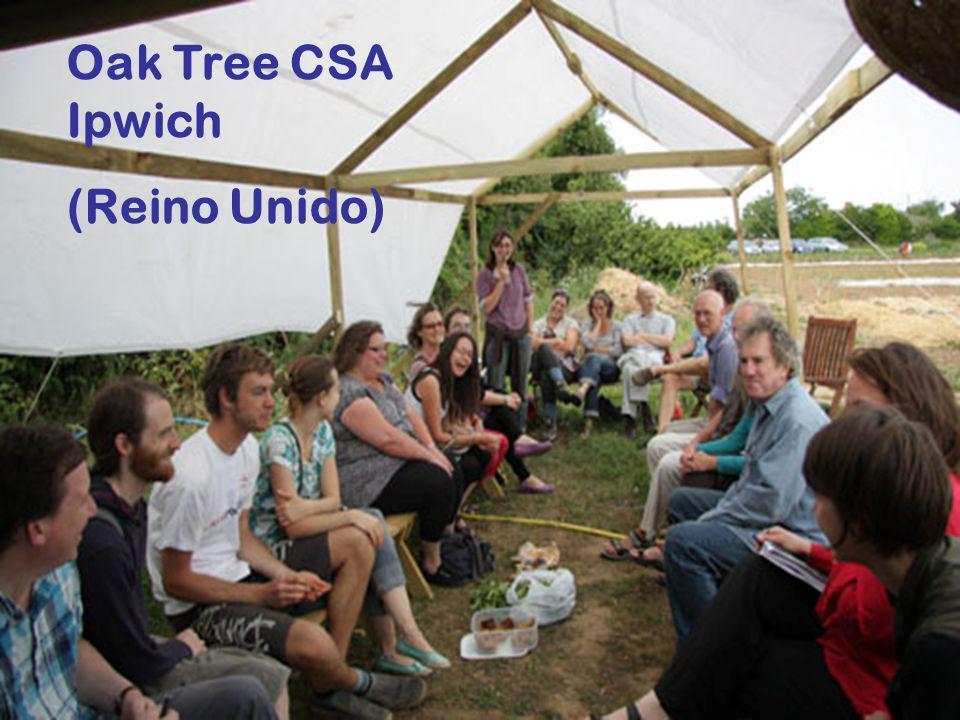 Oak Tree CSA Ipwich (Reino Unido)