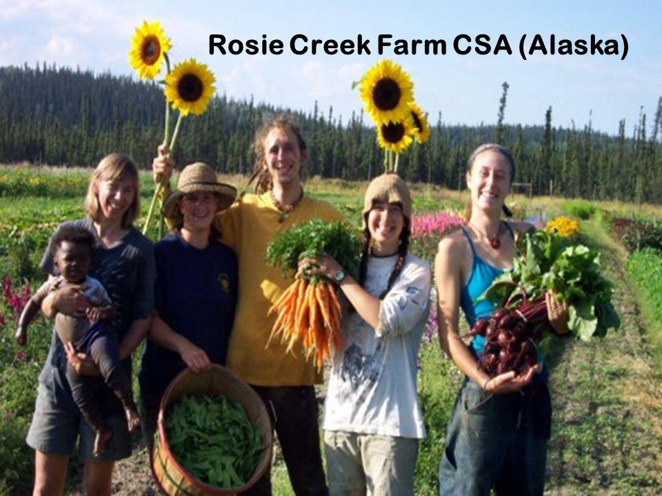 Rosie Creek Farm CSA (Alaska)