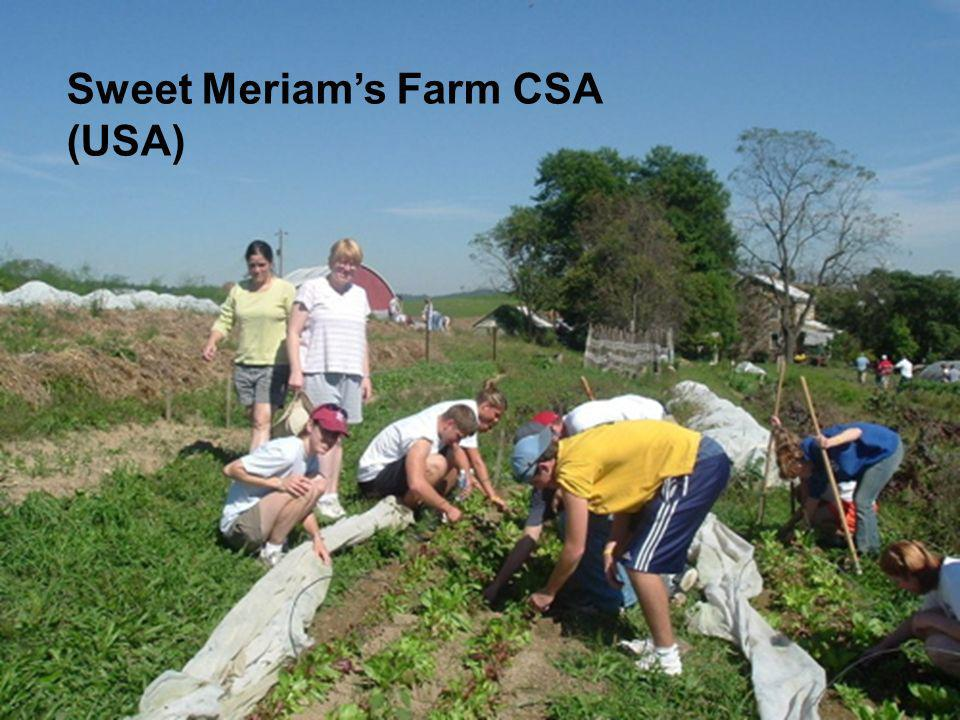 Sweet Meriams Farm CSA (USA)