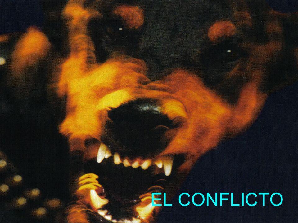 El Conflicto Cabe destacar el hecho natural del conflicto como un desacuerdo en una situación de comunicación común.