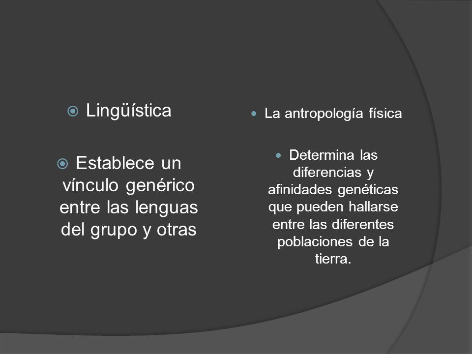Lingüística Establece un vínculo genérico entre las lenguas del grupo y otras La antropología física Determina las diferencias y afinidades genéticas