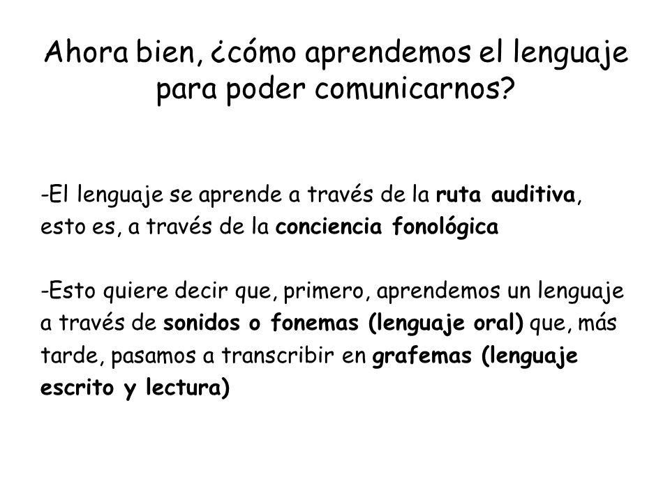 Ahora bien, ¿cómo aprendemos el lenguaje para poder comunicarnos? -El lenguaje se aprende a través de la ruta auditiva, esto es, a través de la concie