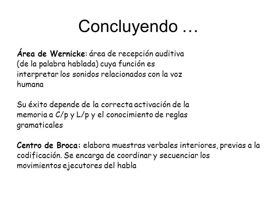 Concluyendo … Área de Wernicke: área de recepción auditiva (de la palabra hablada) cuya función es interpretar los sonidos relacionados con la voz hum