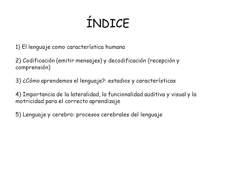 1) El lenguaje como característica humana 2) Codificación (emitir mensajes) y decodificación (recepción y comprensión) 3) ¿Cómo aprendemos el lenguaje