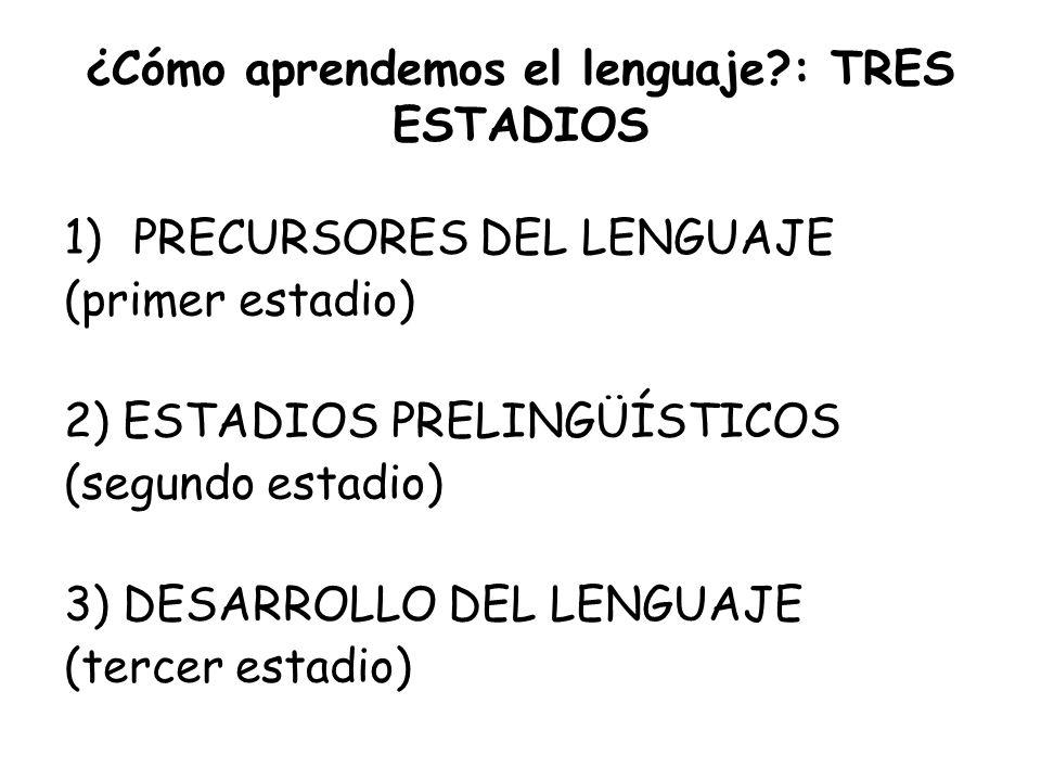 ¿Cómo aprendemos el lenguaje?: TRES ESTADIOS 1)PRECURSORES DEL LENGUAJE (primer estadio) 2) ESTADIOS PRELINGÜÍSTICOS (segundo estadio) 3) DESARROLLO D